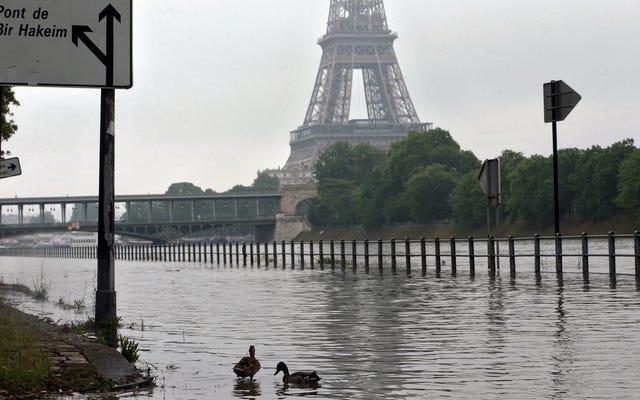 Le Louvre fait bouger l'art en raison des inondations historiques à Paris