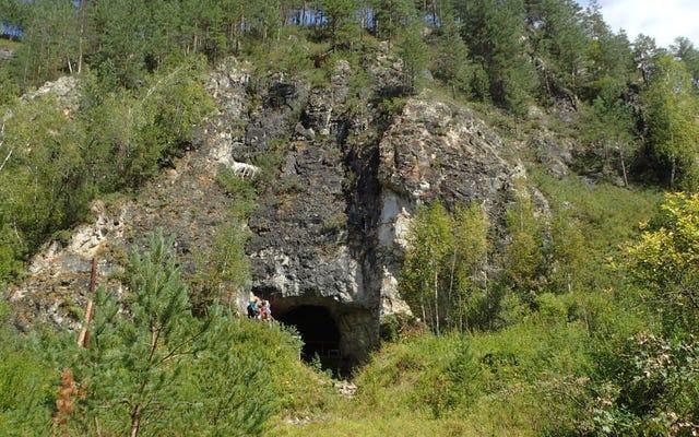 ネアンデルタール人とデニソワ人は何千年もの間シベリアの洞窟を共有しました、新しい研究は示唆します
