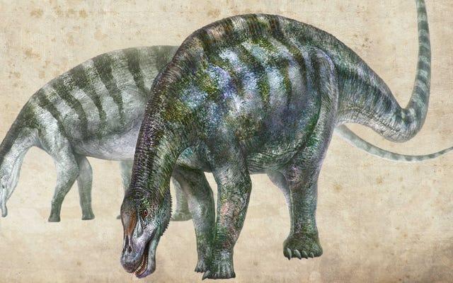 Phát hiện loài khủng long 'rồng kỳ thú' mới ở Trung Quốc