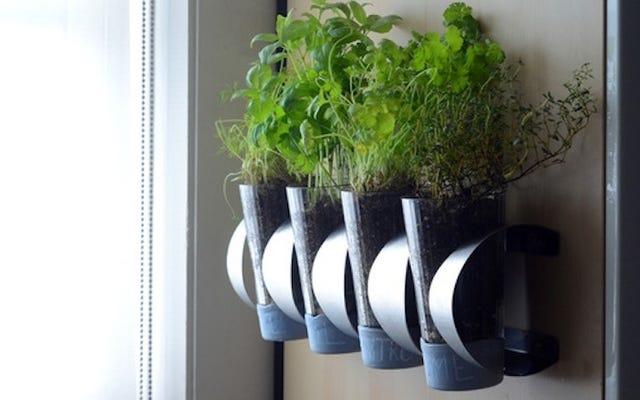 Verwandeln Sie ein IKEA Weinregal in einen an der Wand montierten Kräutergarten