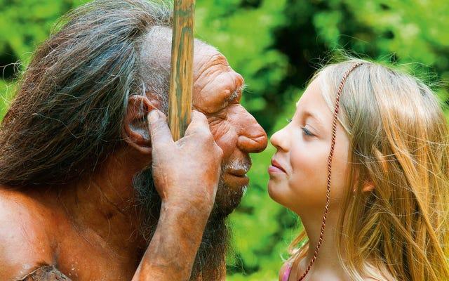 人間には予期せぬ利点があり、それが私たちをネアンダーサルに打ち勝ちました:眉毛