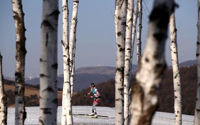 Le skieur de fond autrichien qui court en deuxième fait un mauvais virage et termine neuvième