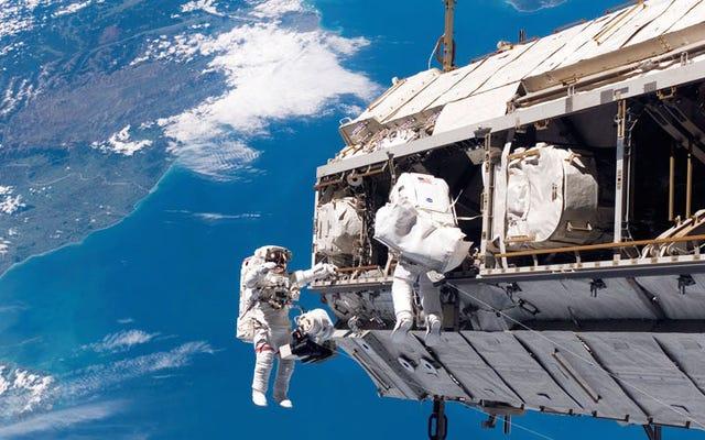 ISSの新しいツールは、エイリアンの生命を見つけるのに役立つ可能性があります
