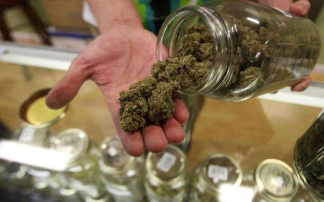 ネバダ州知事は、雑草の供給が少ないことで非常事態を宣言しました