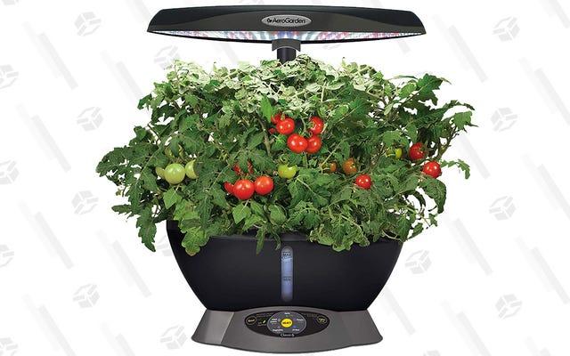 69 $ 'lık AeroGarden Classic, Az Bakım Gerektiren Bahçeciliğin Özüdür