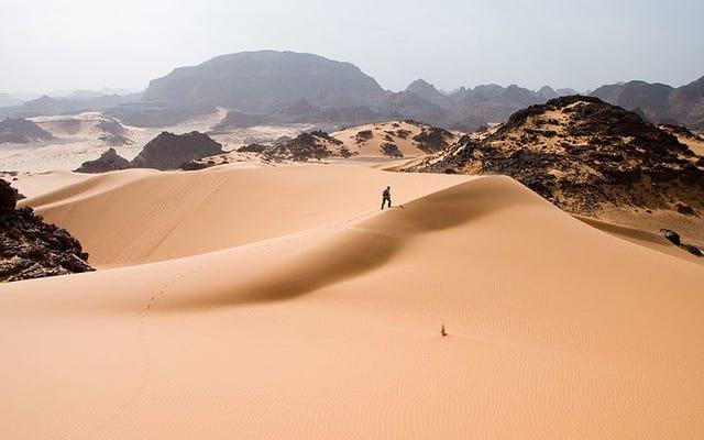 それで、ええと、サハラ砂漠で何が起こっているのですか?