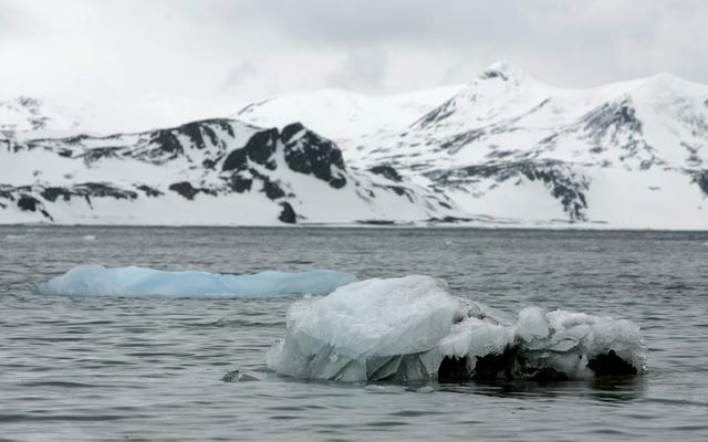 """Prominenter Antarktis-Geologe wegen sexueller Belästigung von Kollegen beschuldigt: """"Heute werde ich Sie zum Weinen bringen"""""""