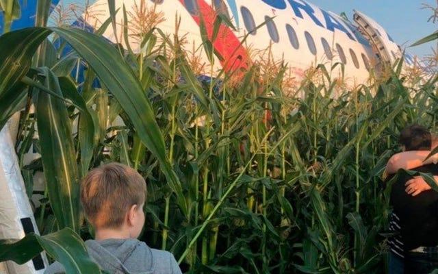 乗客は、ロシアのトウモロコシ畑に233人の乗客がいる飛行機の奇跡的な緊急着陸を記録します