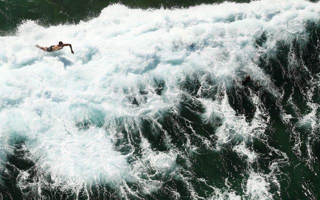 衝撃的な新しい研究によると、惑星は前例のない海洋条件に直面しています
