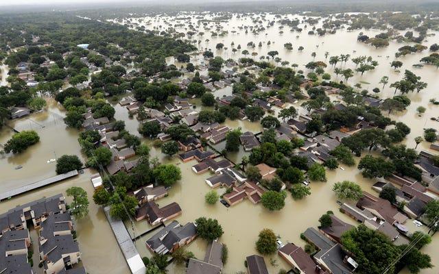 Харви побил рекорд самого влажного тропического шторма в истории США