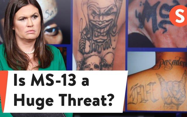 MS-13についての真実