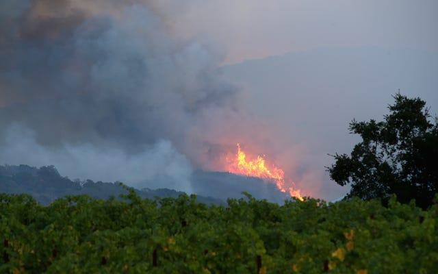山火事の脅威にさらされている地域に住んでいる場合に安全を保つ方法