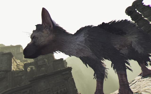 最後の守護者の鳥の犬はVRではるかに良く見えます