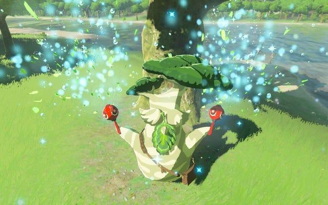 Seseorang Telah Menemukan 900 Benih Korok Di Zelda