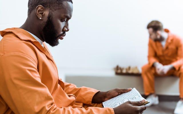 アリゾナ州の囚人に刑事司法制度を批判する本が送られました。今、州はそれを禁止しました