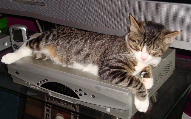 План FCC по ремонту кабельных коробок сэкономит вам кучу денег