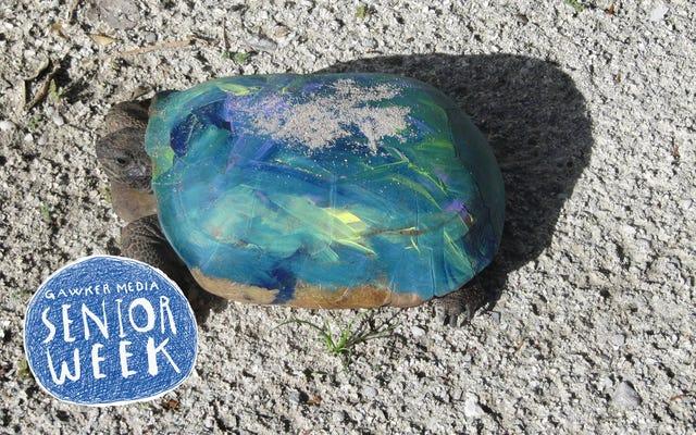 Los idiotas no pueden dejar de pintar tortugas
