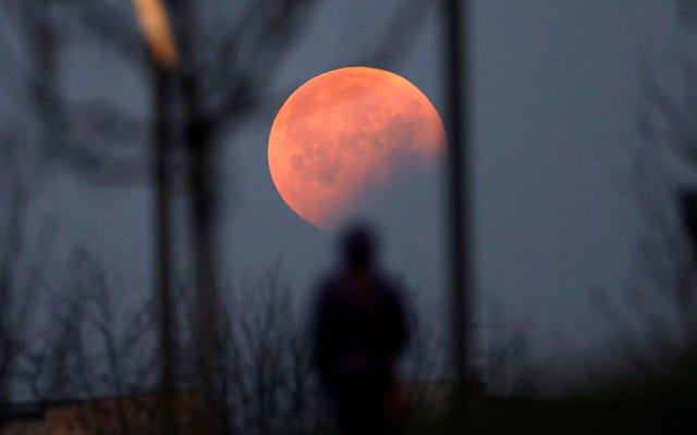 Les meilleures photos de l'éclipse lunaire totale et de la super lune de 2019