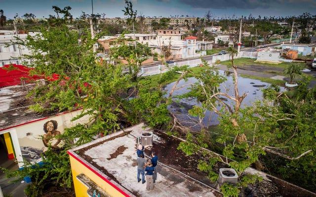 プエルトリコでは、革新的なソーラープロジェクトが困っている子供たちを支援しています