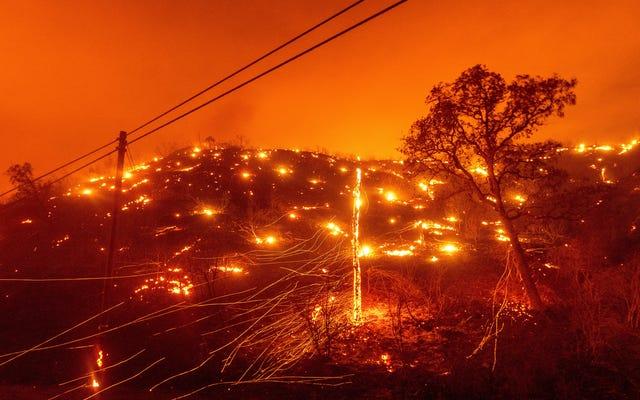 Pożary wybuchają w Kalifornii pośród rekordowych upałów