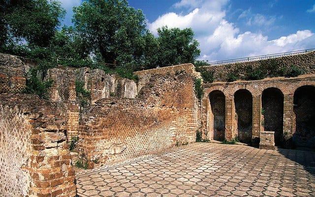 ローマ皇帝は古代の朝食の別荘で古代のウィーティーズを食べた可能性があります