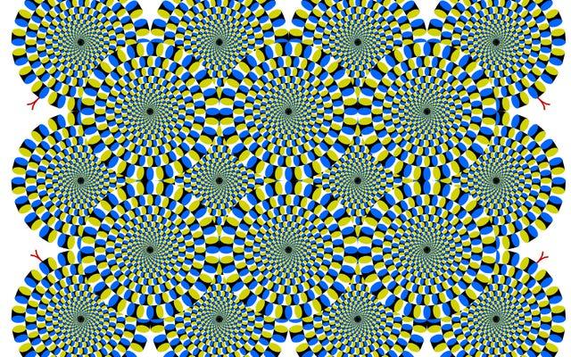 この目の錯覚は非常に強力なので、あなたの脳と猫をだますことができます