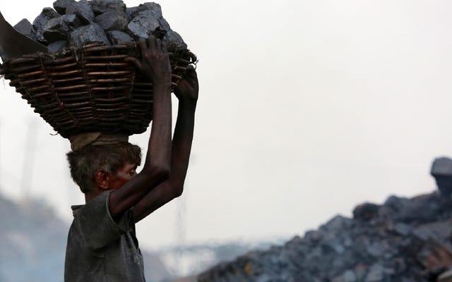 Rapporto: Il primo ministro indiano propone di aiutare l'industria del carbone a sopravvivere in mezzo alla crisi climatica