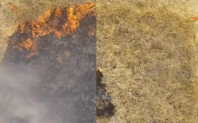 この新しいスプレーゲルは、大規模な火災の防止に役立つ可能性があります