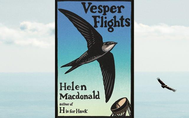 Al igual que H es para Hawk antes, los vuelos Vesper de Helen Macdonald se disparan