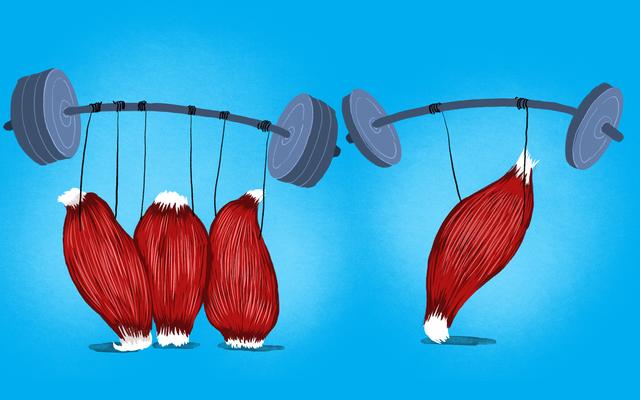 Haruskah Saya Melakukan Latihan Seluruh Tubuh, atau Bekerja Satu Kelompok Otot Sekaligus?