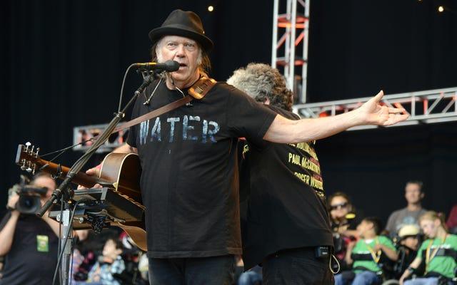 Neil Young cho rằng thật vui nhộn khi Dana Loesch của NRA ghét anh ta