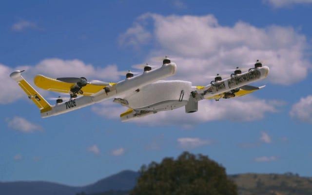 वर्जीनिया में होम ड्रोन डिलीवरी के लिए एफएए क्लियर अल्फाबेट की विंग