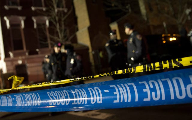 Le NYPD dispose désormais d'un outil automatisé pour les aider à reconnaître les modèles de crimes