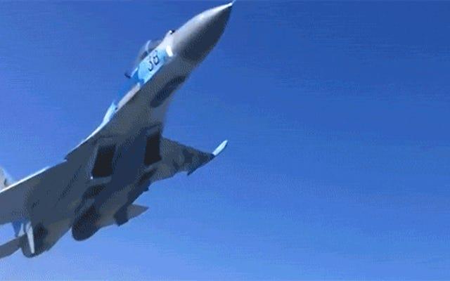 この戦闘機は地面に非常に接近して飛んだので、基本的に男をノックダウンしました