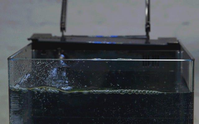 सैमसंग का कहना है कि इसका नया S7 वाटर-रेसिस्टेंट है, इसलिए हमने इसे फिश टैंक में फेंक दिया