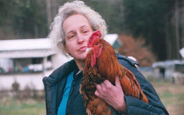 For the Birdsは、200羽の家禽の元所有者についての思いやりのあるドキュメンタリーです。