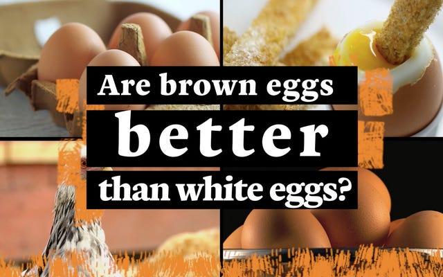 Czy brązowe jajka są lepsze od białych?