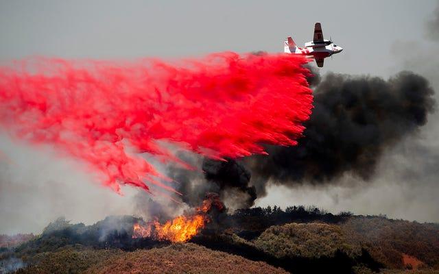 野火消火器が通常赤い理由(およびそれらがどのようにそれを塗るか)