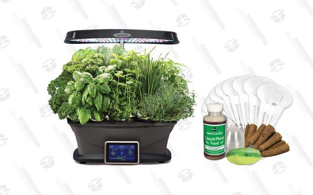 Coseche esta oferta de AeroGarden y cultive algunas hierbas mientras están maduras