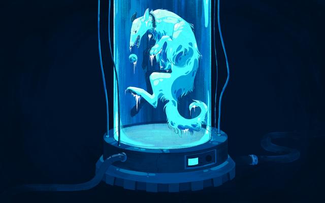 Cryonics, Dakota le chien et l'espoir de toujours
