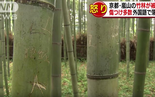 Les touristes ruinent la beauté pittoresque de Kyoto