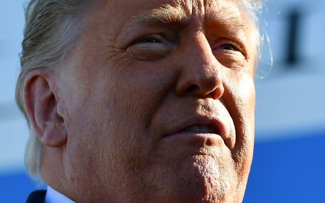 CEO de Twitter sobre la prohibición de Trump: el discurso en línea puede causar daños fuera de línea
