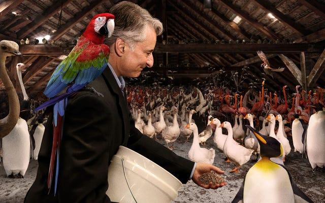 Le président de la société Audubon passe une autre matinée dans les 2,9 milliards d'oiseaux manquants de la nation d'alimentation du grenier