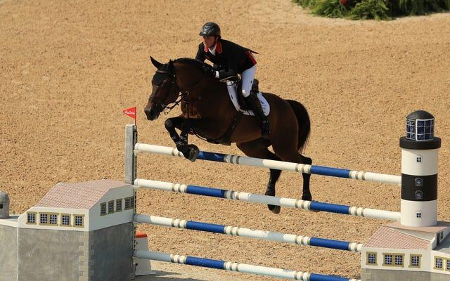 実は、馬のスポーツはいいです
