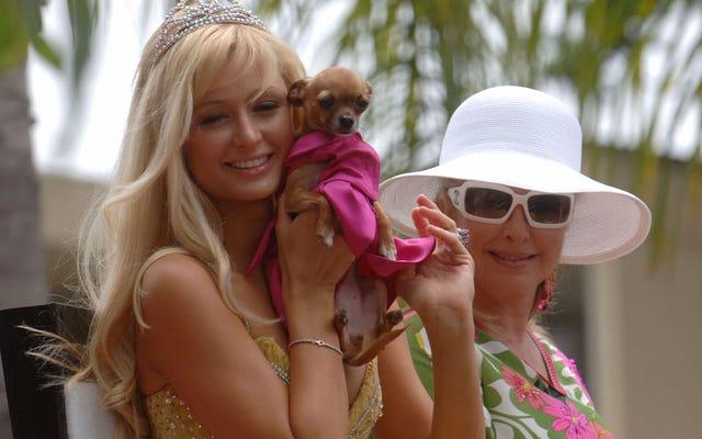 Tinkerbell Hilton, der geliebte Geldbörsenhund von Paris, ist tot. RIP Tinkerbell!