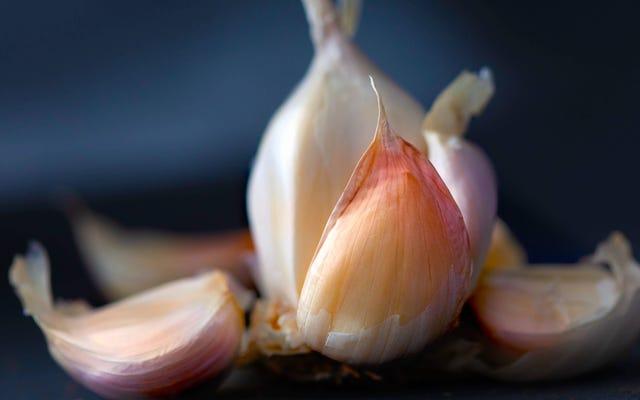 การแฮ็ก Viral Garlic ไม่ได้ผล