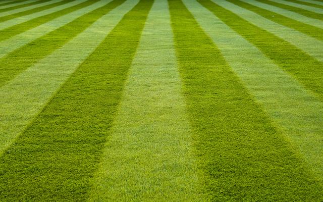 芝刈りをやめる