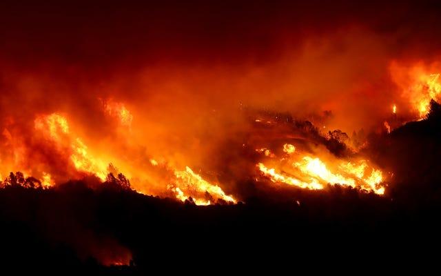 Ngọn lửa Kincade bùng nổ ở xứ sở rượu vang nơi có lịch trình mất điện
