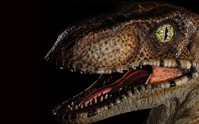 Mettez cette tête de Velociraptor Jurassic Park de 1200 $ dans votre hall d'entrée pour accueillir et terrifier les invités