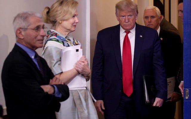 L'amministrazione Trump cerca di riaprire l'America il mese prossimo perché sono tutti idioti